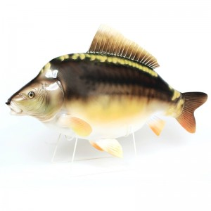 Real Trophy Karp